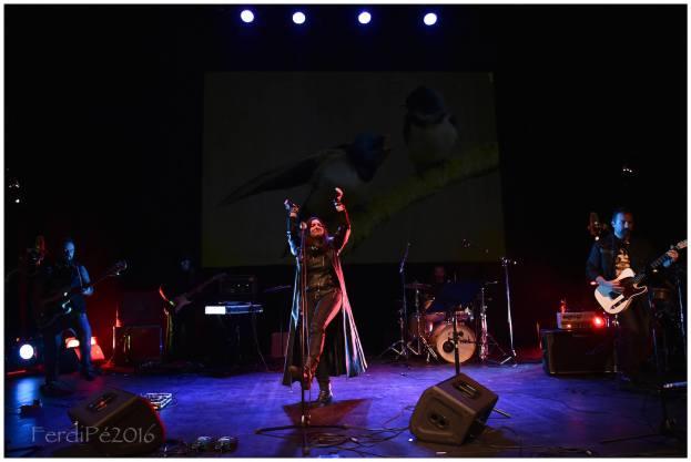 DeSEO Arte Festival 2016